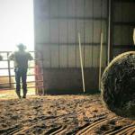 Farmer veteran James Webb of Conway Cattle Company